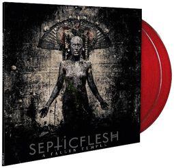 A fallen temple (2014 reissue)