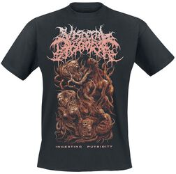 Visceral Disgorge (Band) Ingesting Putridity