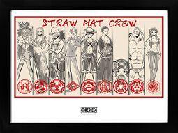 Straw Hat Crew