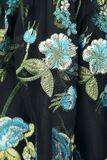 Dirndl incl. lace blouse