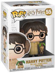 Harry Potter (Herbology) Vinylfiguur 55