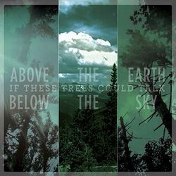 If These Trees Could Talk Above the earth, below the sky