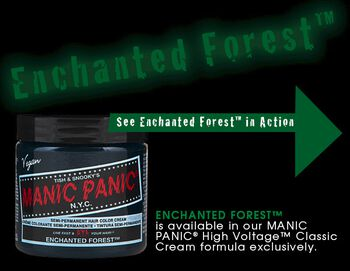Enchanted Forest - Classic