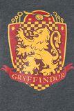 Gryffondor Quidditch