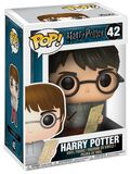 Harry Potter with Marauders Map Vinylfiguur 42