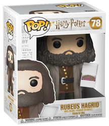 Rubeus Hagrid (Oversize) Vinylfiguur78